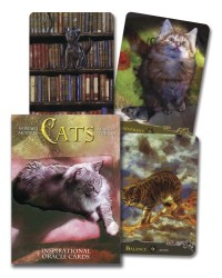 Cats Inspirational Oracle Cards Mystic Convergence Metaphysical Supplies Metaphysical Supplies, Pagan Jewelry, Witchcraft Supply, New Age Spiritual Store