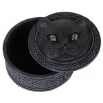 Black Cat Trinket Box with Rolling Eyes at Mystic Convergence Metaphysical Supplies, Metaphysical Supplies, Pagan Jewelry, Witchcraft Supply, New Age Spiritual Store