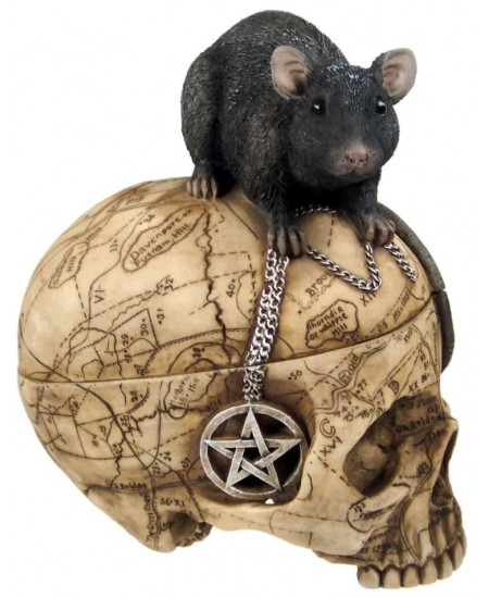 Salem Witch Skull and Mouse Box at Mystic Convergence Metaphysical Supplies, Metaphysical Supplies, Pagan Jewelry, Witchcraft Supply, New Age Spiritual Store