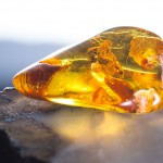 Amber Oil at Mystic Convergence Metaphysical Supplies, Metaphysical Supplies, Pagan Jewelry, Witchcraft Supply, New Age Spiritual Store
