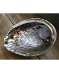 Abalone Shell Bowl - Extra Large Mystic Convergence Metaphysical Supplies Metaphysical Supplies, Pagan Jewelry, Witchcraft Supply, New Age Spiritual Store