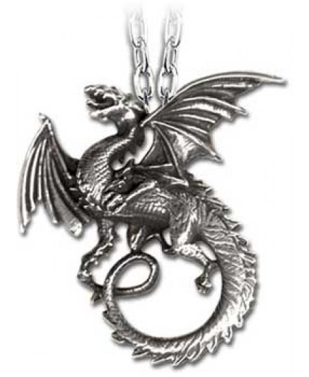 The Whitby Wyrm Pewter Dragon Necklace at Mystic Convergence Metaphysical Supplies, Metaphysical Supplies, Pagan Jewelry, Witchcraft Supply, New Age Spiritual Store
