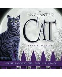 Enchanted Cat - Feline Fascinations, Spells and Magick Mystic Convergence Metaphysical Supplies Metaphysical Supplies, Pagan Jewelry, Witchcraft Supply, New Age Spiritual Store