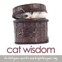 Cat Wisdom Book