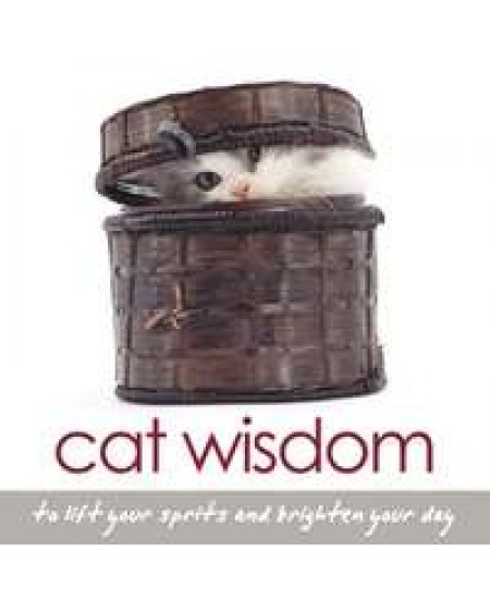 Cat Wisdom Book at Mystic Convergence Metaphysical Supplies, Metaphysical Supplies, Pagan Jewelry, Witchcraft Supply, New Age Spiritual Store