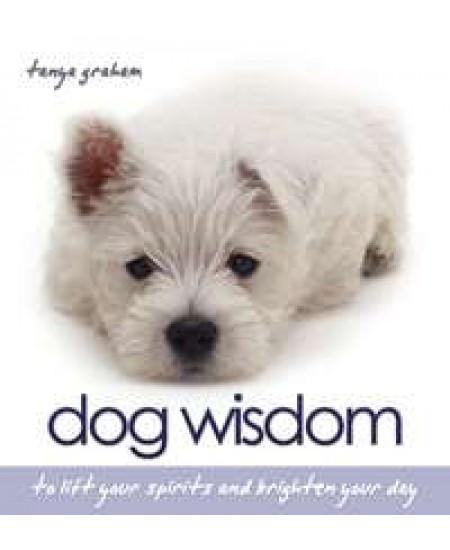 Dog Wisdom Book at Mystic Convergence Metaphysical Supplies, Metaphysical Supplies, Pagan Jewelry, Witchcraft Supply, New Age Spiritual Store
