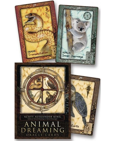 Animal Dreaming Oracle Cards at Mystic Convergence Metaphysical Supplies, Metaphysical Supplies, Pagan Jewelry, Witchcraft Supply, New Age Spiritual Store