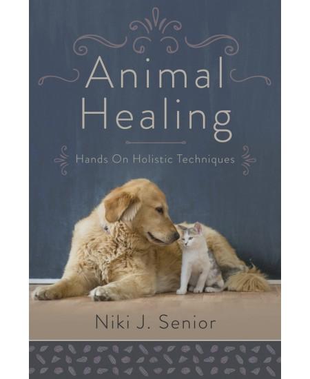 Animal Healing at Mystic Convergence Metaphysical Supplies, Metaphysical Supplies, Pagan Jewelry, Witchcraft Supply, New Age Spiritual Store