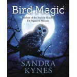 Bird Magic at Mystic Convergence Metaphysical Supplies, Metaphysical Supplies, Pagan Jewelry, Witchcraft Supply, New Age Spiritual Store