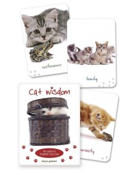 Cat Wisdom Cards Mystic Convergence Metaphysical Supplies Metaphysical Supplies, Pagan Jewelry, Witchcraft Supply, New Age Spiritual Store