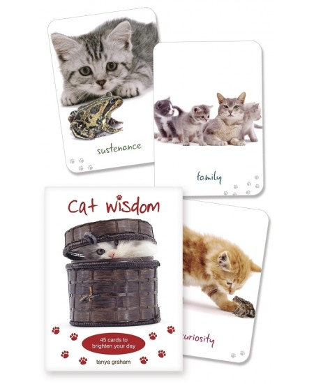 Cat Wisdom Cards at Mystic Convergence Metaphysical Supplies, Metaphysical Supplies, Pagan Jewelry, Witchcraft Supply, New Age Spiritual Store