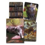 Cats Inspirational Oracle Cards at Mystic Convergence Metaphysical Supplies, Metaphysical Supplies, Pagan Jewelry, Witchcraft Supply, New Age Spiritual Store