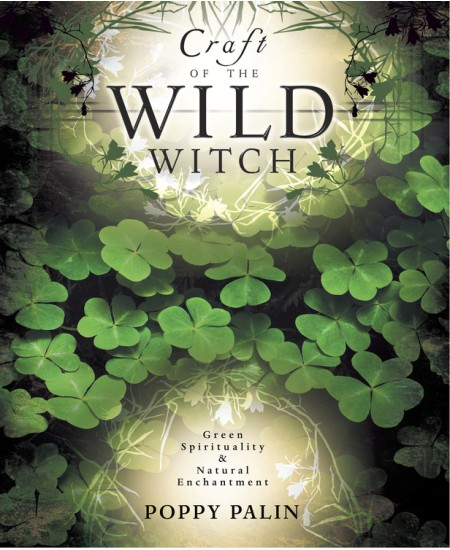 Craft of the Wild Witch at Mystic Convergence Metaphysical Supplies, Metaphysical Supplies, Pagan Jewelry, Witchcraft Supply, New Age Spiritual Store