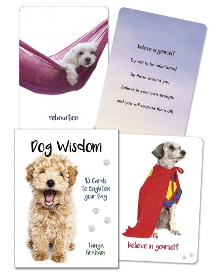 Dog Wisdom Cards at Mystic Convergence Metaphysical Supplies, Metaphysical Supplies, Pagan Jewelry, Witchcraft Supply, New Age Spiritual Store