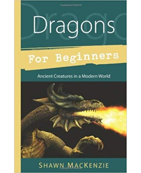 Dragons for Beginners at Mystic Convergence Metaphysical Supplies, Metaphysical Supplies, Pagan Jewelry, Witchcraft Supply, New Age Spiritual Store