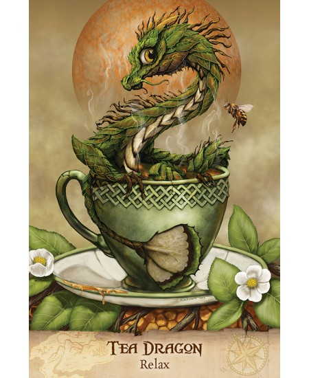 Field Guide To Garden Dragons Cards at Mystic Convergence Metaphysical Supplies, Metaphysical Supplies, Pagan Jewelry, Witchcraft Supply, New Age Spiritual Store