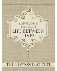 Llewellyn's Little Book of Life Between Lives Mystic Convergence Metaphysical Supplies Metaphysical Supplies, Pagan Jewelry, Witchcraft Supply, New Age Spiritual Store