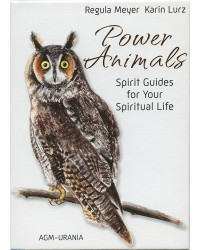 Power Animals Cards Mystic Convergence Metaphysical Supplies Metaphysical Supplies, Pagan Jewelry, Witchcraft Supply, New Age Spiritual Store