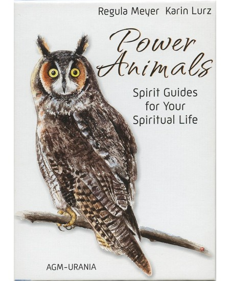 Power Animals Cards at Mystic Convergence Metaphysical Supplies, Metaphysical Supplies, Pagan Jewelry, Witchcraft Supply, New Age Spiritual Store