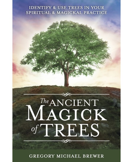 The Ancient Magick of Trees at Mystic Convergence Metaphysical Supplies, Metaphysical Supplies, Pagan Jewelry, Witchcraft Supply, New Age Spiritual Store