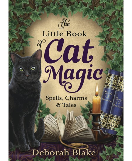 The Little Book of Cat Magic at Mystic Convergence Metaphysical Supplies, Metaphysical Supplies, Pagan Jewelry, Witchcraft Supply, New Age Spiritual Store