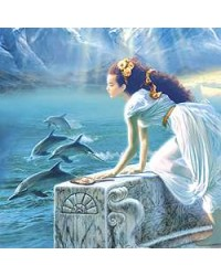 Dolphin Greeting Card with Music CD Mystic Convergence Wiccan Supplies, Pagan Jewelry, Witchcraft Supplies, New Age Store