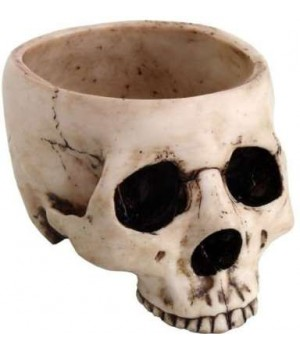 Skull Bowl in Resin Mystic Convergence Wiccan Supplies, Pagan Jewelry, Witchcraft Supplies, New Age Store