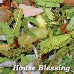 Traditional Rites Loose Incense - House Blessing at Mystic Convergence Metaphysical Supplies, Metaphysical Supplies, Pagan Jewelry, Witchcraft Supply, New Age Spiritual Store
