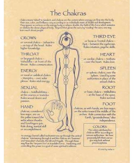 Chakras Reference Parchment Poster at Mystic Convergence Metaphysical Supplies, Metaphysical Supplies, Pagan Jewelry, Witchcraft Supply, New Age Spiritual Store
