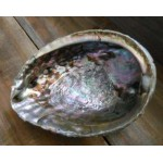 Abalone Shell Bowl - Extra Large at Mystic Convergence Metaphysical Supplies, Metaphysical Supplies, Pagan Jewelry, Witchcraft Supply, New Age Spiritual Store