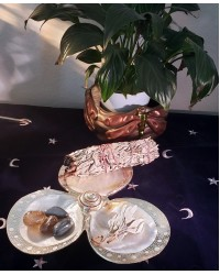 Shell Trio Dish with Silver Rims