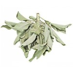 White Sage Leaves Loose Herb at Mystic Convergence Metaphysical Supplies, Metaphysical Supplies, Pagan Jewelry, Witchcraft Supply, New Age Spiritual Store