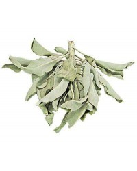 White Sage Leaves Loose Herb Mystic Convergence Metaphysical Supplies Metaphysical Supplies, Pagan Jewelry, Witchcraft Supply, New Age Spiritual Store