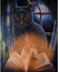 Bewitched Black Cat Canvas Print Mystic Convergence Metaphysical Supplies Metaphysical Supplies, Pagan Jewelry, Witchcraft Supply, New Age Spiritual Store
